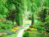 Создание и поддержка красивого сада